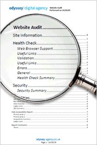 Website Audit Document